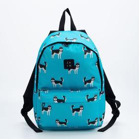 Рюкзак, отдел на молнии, наружный карман, цвет голубой