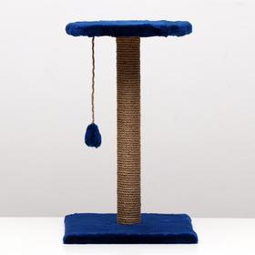 """Когтеточка """"Столбик"""" с круглой полкой и игрушкой, 35 х 35 х 60 см, синяя"""