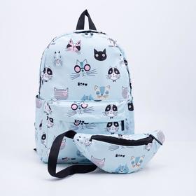 Arina's backpack, 30 * 12 * 40, detached with a zipper, n / pocket, 2 side pockets, bag, zel / cats