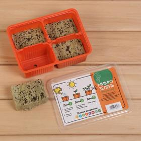 Набор для выращивания микрозелени «Вырасти сам микрозелень», Кольраби, лоток 135 × 185 × 60 мм