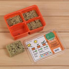 Набор для выращивания микрозелени «Вырасти сам микрозелень», Пак-чой, лоток 135 × 185 × 60 мм