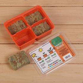 Набор для выращивания микрозелени «Вырасти сам микрозелень», Редис, лоток 135 × 185 × 60 мм