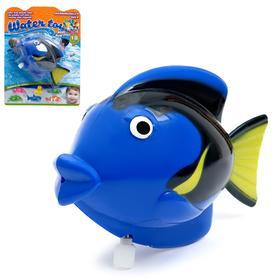 Водоплавающая игрушка «Рыбка», заводная