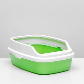 "Туалет ""Айша"" с бортом 53 х 39 х 21 см, зеленый перламутр"