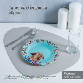 Тарелка обеденная Доляна «Кролик», d=23 см