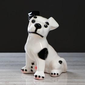 "Копилка ""Собака Рэкс"" глянец, белая, 27 см"