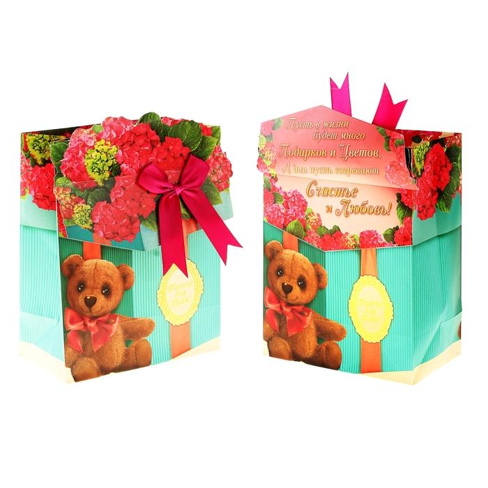 Пакет ламинированный с открыткой и тиснением «Подарок», MS 18 × 23 × 8 см