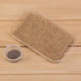 Набор для выращивания микрозелени My Greens, Редис (7 г), лоток, джутовый коврик
