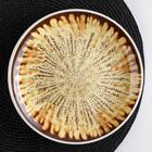 Тарелка десертная «Доменик», 20×2 см, цвет коричневый - фото 971532