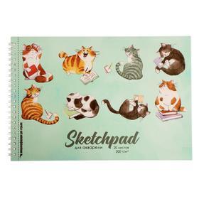 """Скетчпад А4, 20 листов на гребне """"Коты"""", обложка мелованный картон, блок 200 г/м2"""
