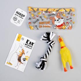 Набор для собак «Поиграй со мной!» курица, канат