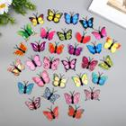 """Магнит пластик """"Бабочка одинарные крылышки разноцветные"""" 4,5 см"""