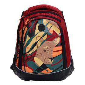 Рюкзак молодежный, Grizzly RD-146, 42x31x20 см, эргономичная спинка, отделение для ноутбука