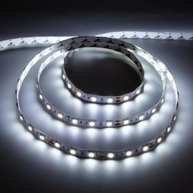 Светодиодная лента URM, 12В, SMD5050, 5 м, IP22, 14.4Вт/м, 60 LED/м, 6500К