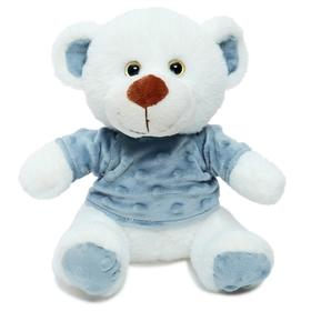 Мягкая игрушка «Медвежонок Ромул», 20 см