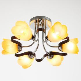 6 ламп