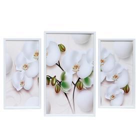 "Картина модульная ""Белая орхидея"" 29*49 - 1шт., 20*40 - 2шт., 50х70 см"