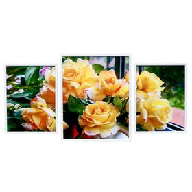 """Картина модульная """"Чайные розы"""" 30*40 - 2 шт., 40*50 -1 шт., 50х100 см"""