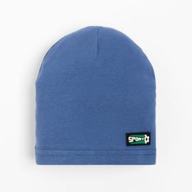Шапка для мальчика, цвет синий/sport, размер 44-48