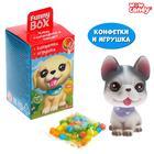 Funny box «Щенята», конфеты, игрушка МИКС - фото 7251497