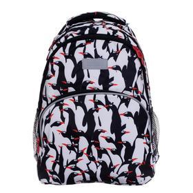 Рюкзак школьный, Grizzly RG-160, 40x27x20 см, эргономичная спинка, отделение для ноутбука, «Пингвин»