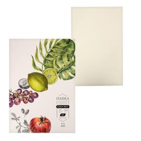 Бумага для сухих техник А3 в папке, «Малевичъ» Graf'Art, 297 x 420, 150 г/м², 25 листов