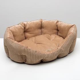 Лежанка для животных,мебельная ткань, холофайбер, 65 х 50 х 21 см, микс цветов