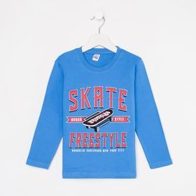Лонгслив для мальчика Skate, цвет синий, рост 110 см (5 лет)