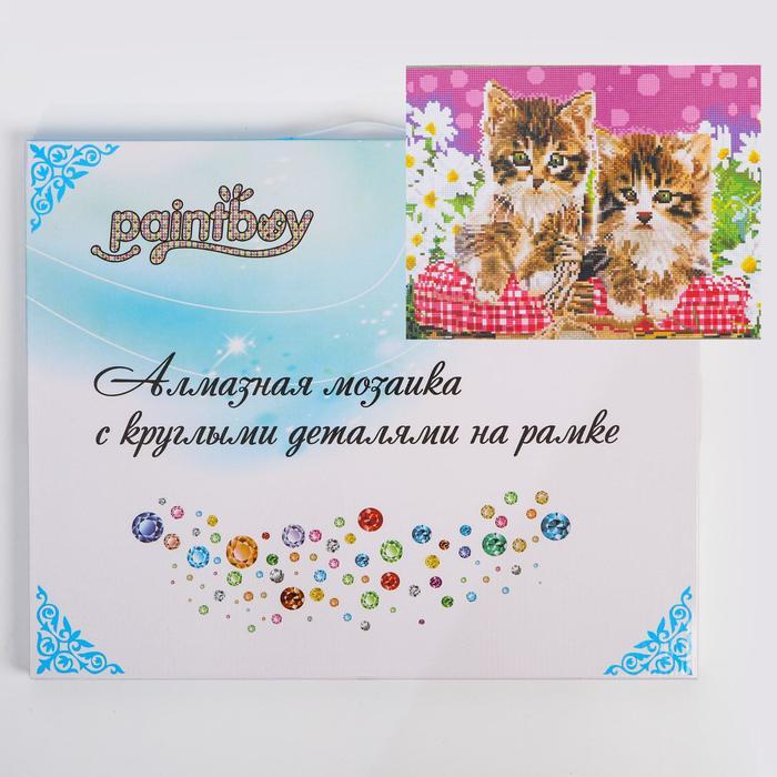 Алмазная мозаика с подрамником, полное заполнение «Котята» 40×50 см - фото 811220