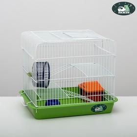 """Клетка для грызунов """"Пижон"""" №3, с 2-я этажами, укомплектованная, 33 х 24 х 28 см, изумрудная  670560"""