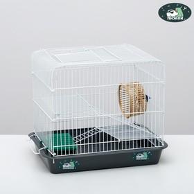 """Клетка для грызунов """"Пижон"""" №3, с 2-я этажами, укомплектованная, 33 х 24 х 28 см, серая"""