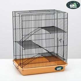 """Клетка для грызунов """"Пижон"""" №9, с 3-я этажами, без наполнения, 33 х 24 х 38 см, бежевая"""