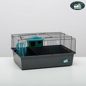 """Клетка для грызунов """"Пижон"""" №4, с этажом, укомплектованная, 37 х 26 х 18 см, серая"""