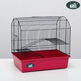 """Клетка для грызунов """"Пижон"""" №11, с 2-я этажами, без наполнения, 37 х 26 х 36 см, рубиновая"""