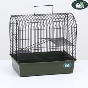 """Клетка для грызунов """"Пижон"""" №11, с 2-я этажами, без наполнения, 37 х 26 х 36 см, изумрудная"""