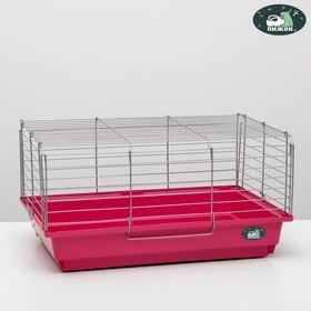 """Клетка для кроликов, морских свинок """"Пижон"""" №6, хром, 58 х 40 х 30 см, рубиновая"""