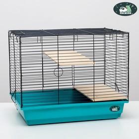 """Клетка для шиншилл """"Пижон"""" №8 с 2-я деревянными этажами, разборная, 58х40х48 см, бирюзовая"""