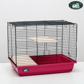 """Клетка для шиншилл """"Пижон"""" №8 с 2-я деревянными этажами, разборная, 58х40х48 см, малиновая"""