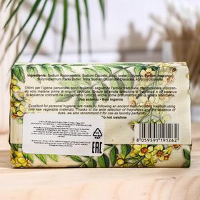 Мыло Florinda Olibano (Palm Oil Free) / Ладан 200 г - фото 7321755