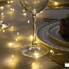"""Гирлянда """"Мишура"""" 10 м роса, IP20, серебристая нить, 200 LED, свечение тёплое белое, фиксинг, 12 В - фото 7326167"""