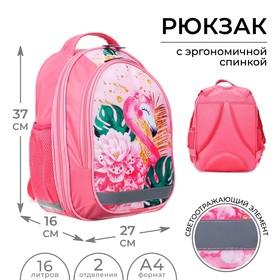 Рюкзак школьный Calligrata, 37 х 27 х 16 см, эргономичная спинка, «Фламинго»