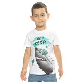 Футболка для мальчиков, рост 104 см, цвет белый
