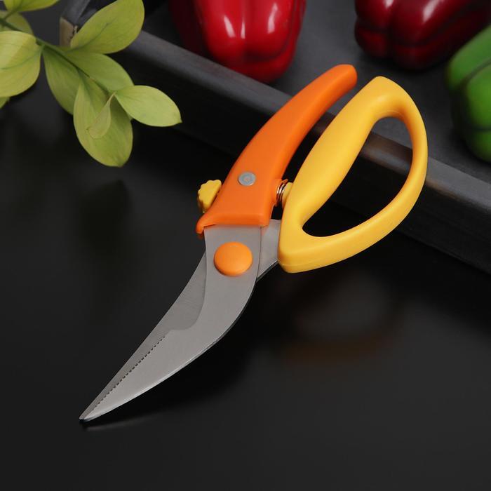 Ножницы для птицы Доляна «Салем», цвет МИКС - фото 728968