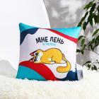 Подушка-антистресс «Мне лень, я тюлень», 23х23 см - фото 9021335
