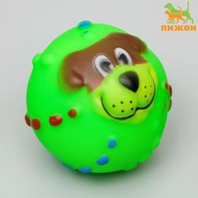 """Игрушка пищащая """"Мяч Джим""""для собак, 6 см, микс"""