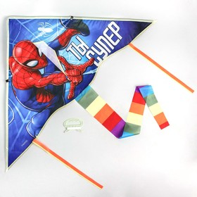 Aerial kite