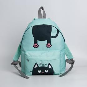 Рюкзак молодёжный, отдел на молнии, наружный карман, цвет мятный, «Кот»