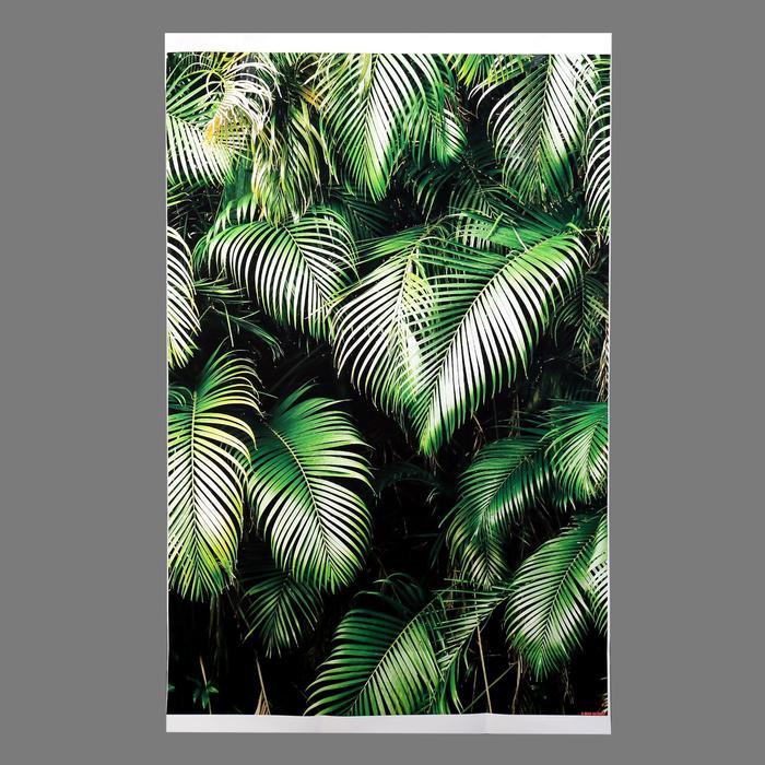 """Фотофон винил """"Пальмовые листья в тени"""" 80х120 см - фото 7452385"""