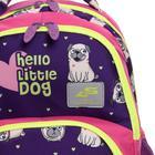 Рюкзак школьный, Luris «Гармония 2», 40 х 28 х 18 см, эргономичная спинка, «Мопс» - фото 820841