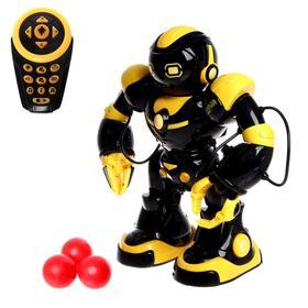 Robot interactive, radio-controlled